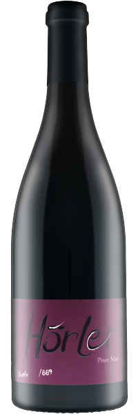 Fläscher Pinot Noir Carsilias 2018 Silas Hörler