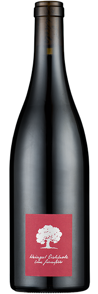 Jeninser Pinot Noir 2019 Weingut Eichholz