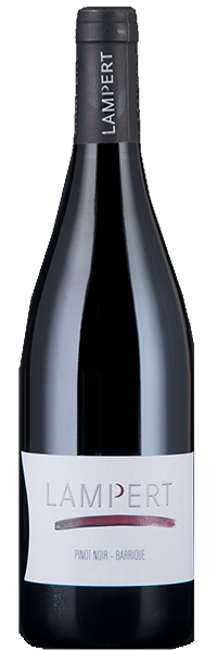 Maienfelder Pinot Noir Barrique 2018 Lampert