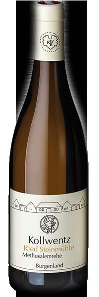 Sauvignon Blanc Methusalemreben 2017 Kollwentz